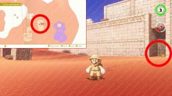 where to find ruins seed sand kingdom mario odyssey