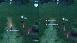 Muscle Branch location farming xenoblade chronicles 2