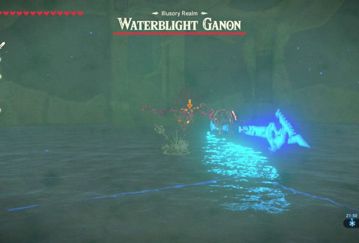 Waterblight Ganon in the Illusory Realm Zelda BOTW