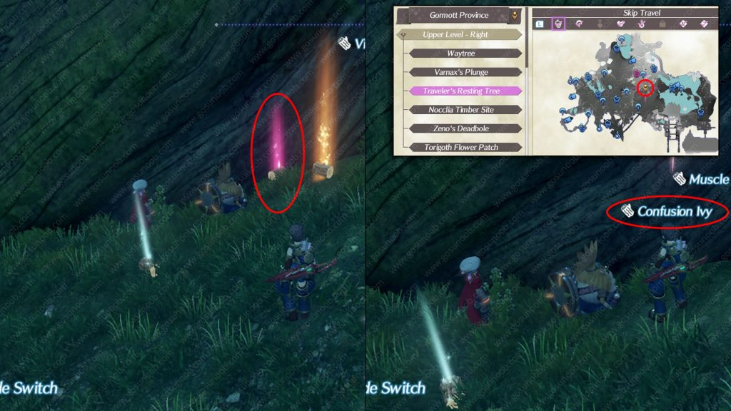 Xenoblade Chronicles Confusion Ivy Location