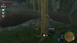Zants Helmet Zelda Botw
