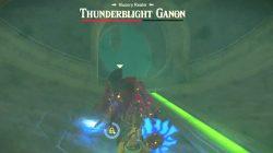 botw champions ballad how to defeat thunderblight ganon