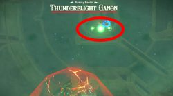 how to defeat thunderblight ganon botw champions ballad