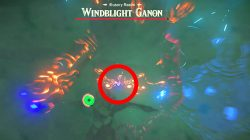 how to kill windblight ganon illusory realm botw champions ballad