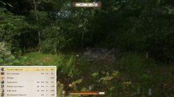 Kingdom Come Deliverance Treasure Map 2 Loot Spot