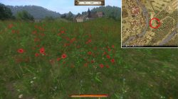 Restless Spirit Poppy Field Kingdom Come Deliverance