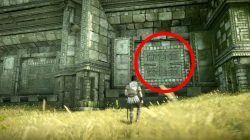 how to get sword of dormin shadow of the colossus