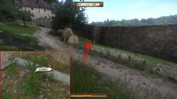 kingdom come deliverance in god's hands comfrey location
