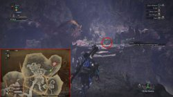 mhw coral orchestra palico gadget location