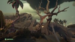 Entwined Trees Sea of Thieves Old Faithful Isle