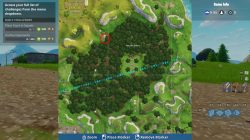fortnite br wailing woods chest picnic spot