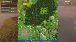 fortnite br wailing woods hidden chest