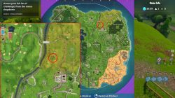 fortnite battle royale stone head locations