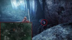 destiny 2 cat locations small gift