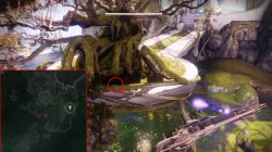 destiny 2 warded by wormhost giant tree