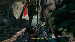 peruvian jungle rough landing how to complete bridge puzzle