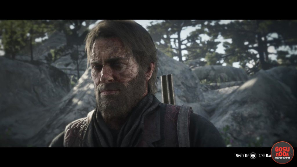 Red Dead Redemption 2 Split Up or Leave Bait - Bear Hunting