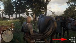 how to change main horse in red dead redemption 2