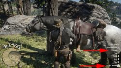 how to clean horse rdr 2 what to do when horse is dirty