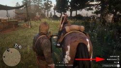 rdr 2 how to remove saddle from horse