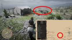 rdr2 help marie find brother or not what to choose