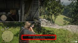 rdr2 homestead stash lonnies shack where to find