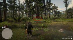 rdr2 legendary bull gator