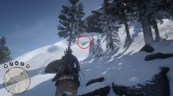 red dead redemption 2 how to get free arabian