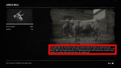 red dead redemption 2 where to get bull