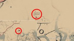 where to find rdr2 lonnies shack location