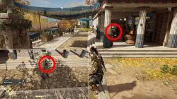 where to find skylax the fair cultist location assassins creed odyssey