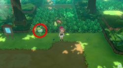 bulbasaur location pokemon lets go pikachu eevee where to find