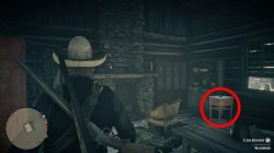 hermit stranger how to get torn treasure map 1 red dead redemption 2