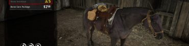 rdr2 online horse insurance