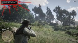 red dead redemption 2 how to use scope