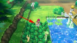 squirtle locations pokemon lets go where to find