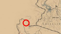 torn treasure map where to find rdr2 location