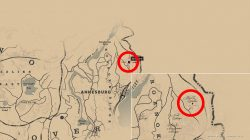 where to find rdr2 hermit stranger location
