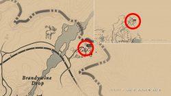 where to find willards rest rdr2 location