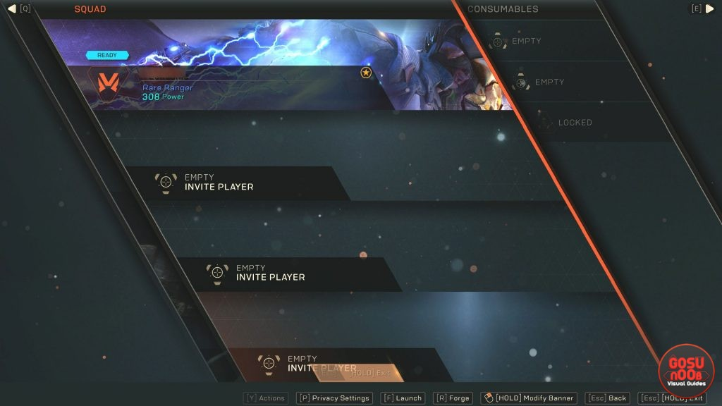 Anthem How to Equip Banners & What They Do