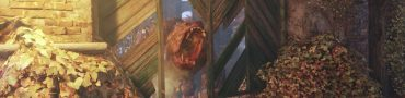 Metro Exodus How to Defeat Bear Master of the Forest Trophy