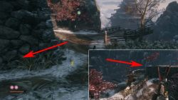 ashina outskirts sekiro where to find divine confetti