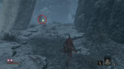 sekiro how to get snap seed