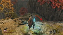 sekiro treasure carp senpou temple