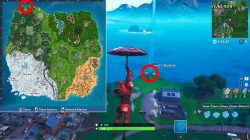 where to find furthest north place in fortnite weekly challenge