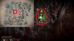 how to get mk11 krypt shinnoks amulet ensorcelled gem of trapped souls location
