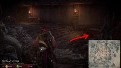 mk11 where to find reptile dead woods