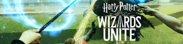 Harry Potter WU Which Hogwarts House to Pick - Gryffindor, Slytherin