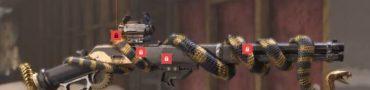 division 2 diamondback exotic rifle