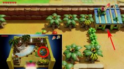 kanalet castle monkey where to find bananas zelda links awakening